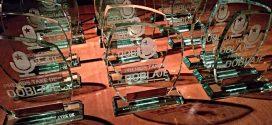 Otra fiesta del doblaje: Premios TAKE II Edición