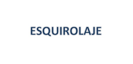 Consulta legal sobre el esquirolaje.